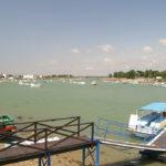 Balade en mer port saint Hilaire de riez