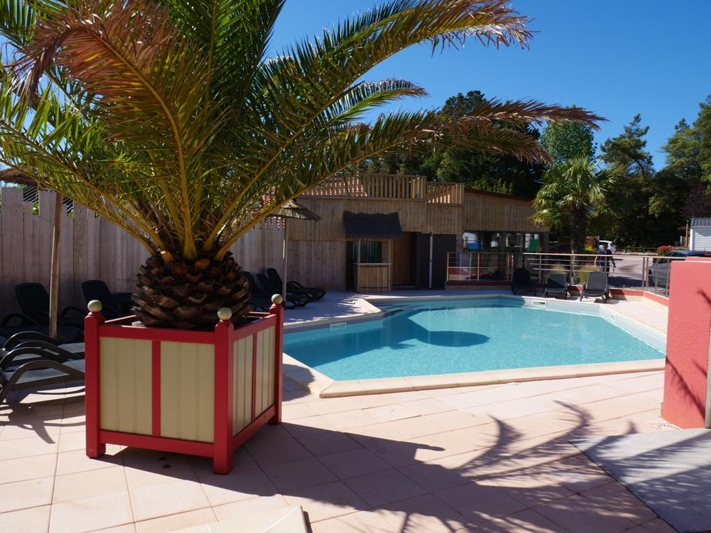 piscine chauffée et ensoleillée du camping
